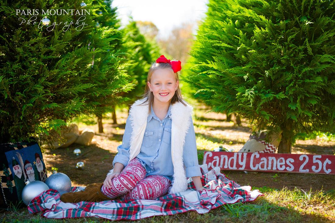 Christmas Tree Farm 6