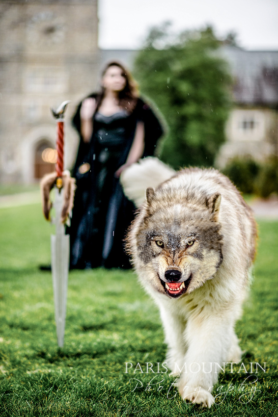 Game of Thrones Styled Shoot-18b