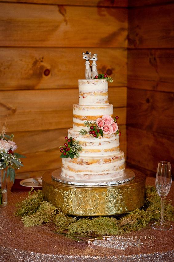 Indigo Falls Wedding-41