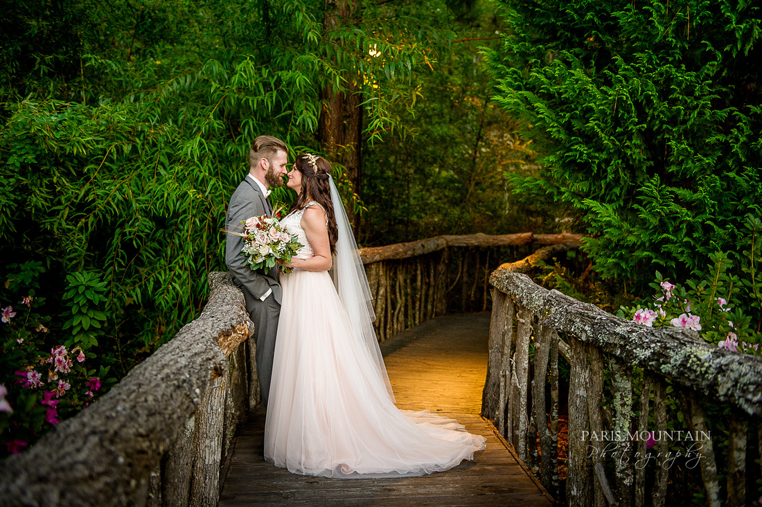 Indigo Falls Wedding-71