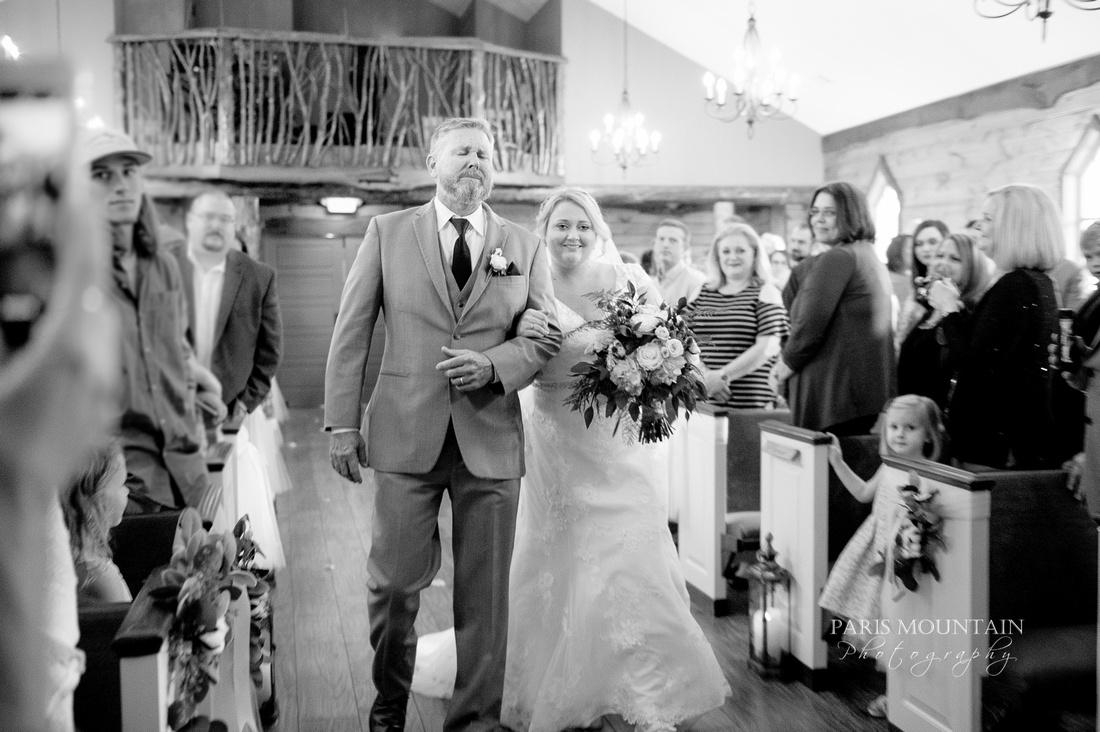 Indigo Falls Wedding-60