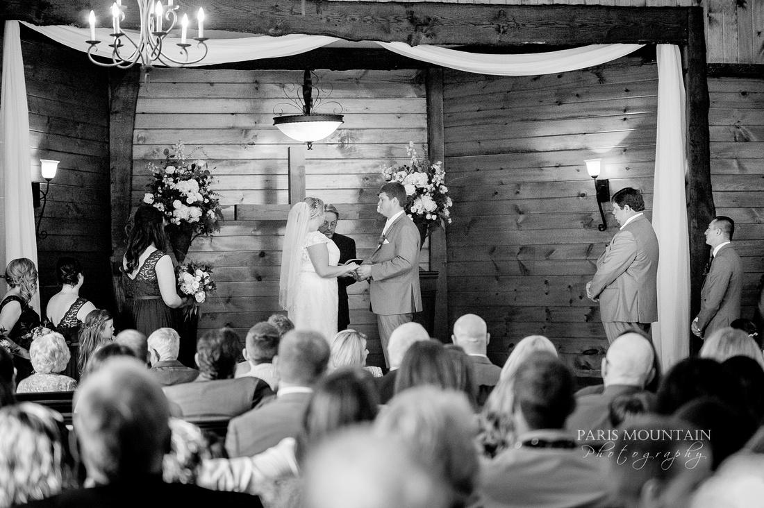 Indigo Falls Wedding-67