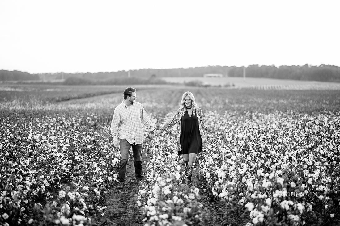 Cotton Field-24
